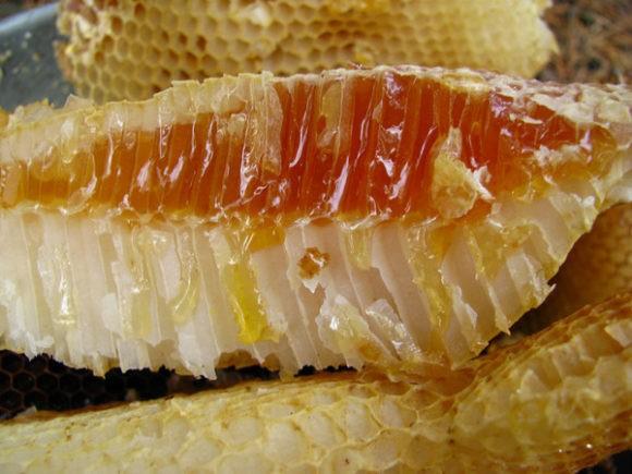 мед в сотах бортевой