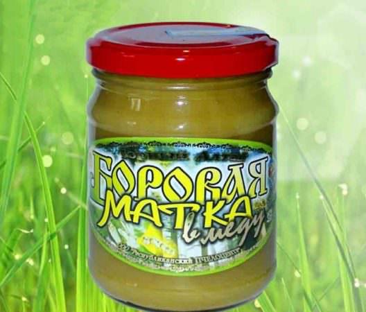 боровая матка в меду